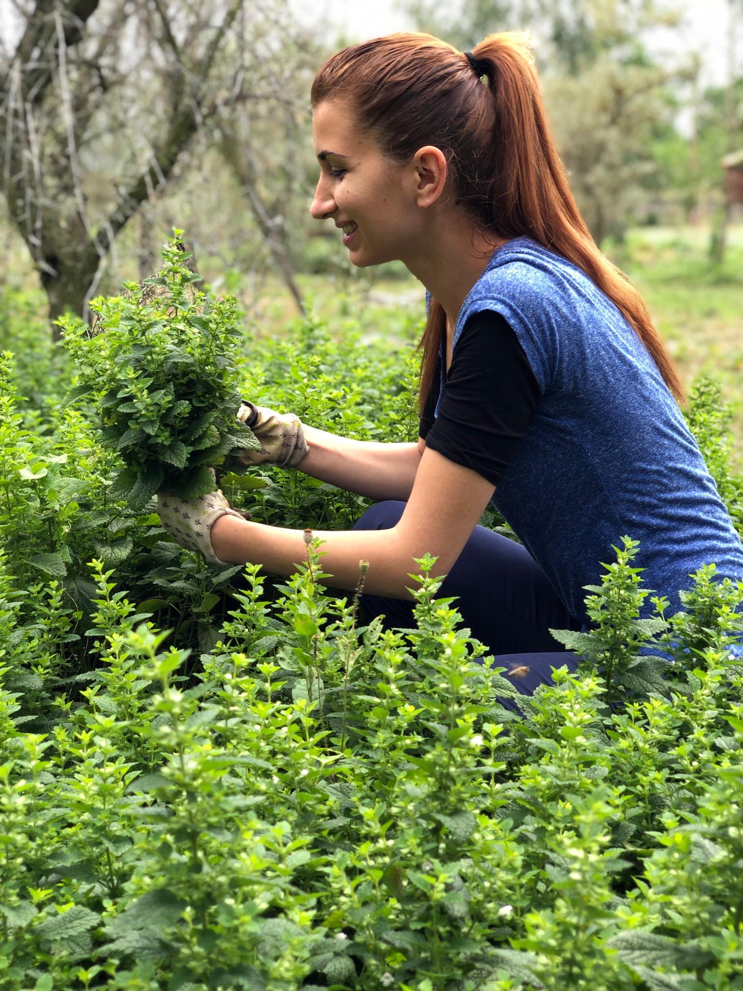 Dr. Farm. Ioana Adina Oancea